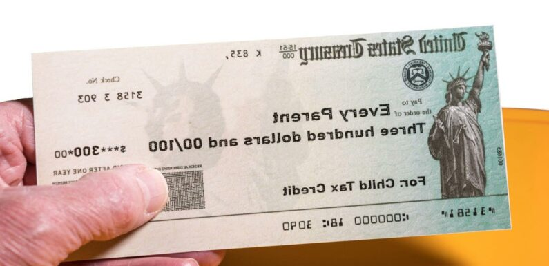 Child tax credit payments: How to track your missing check