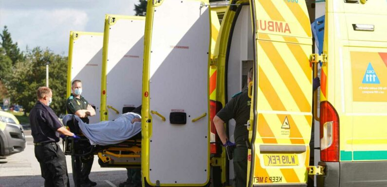 Covid hospitalisations at lowest levels in months as graphs show we could be 'over the worst'