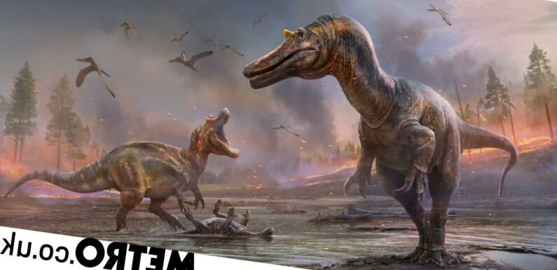 Discovered: Two new types of dinosaur roamed the Isle of Wight 125m years ago