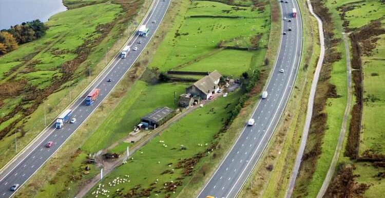 I lived on a farm on an island between two motorways, school run was a nightmare & I once chased sheep across the lanes