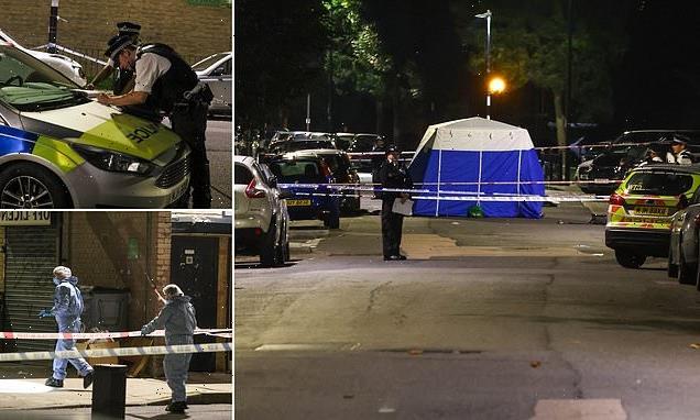 Man in his 30s is stabbed to death during brawl on Isle of Dogs estate