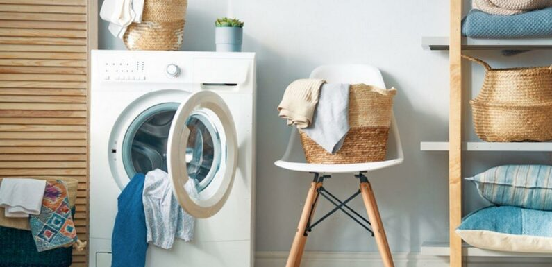 Mrs Hinch fan posts 'game-changing' product to make washing machine smell great