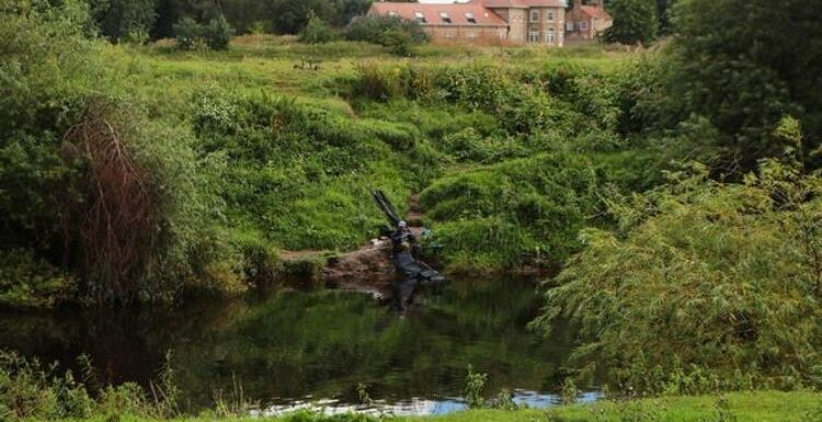 Pollution is the biggest threat to wildlife on our British rivers