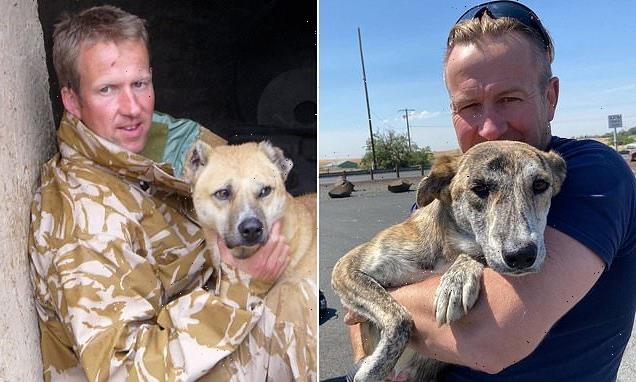 Probe into ex-Royal Marine's mission to save Afghan animals