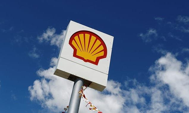 Shell Energy takes on 255,000 customers from collapsed firm Green