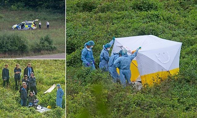 Stunned walkers find body in Biggin Hill field