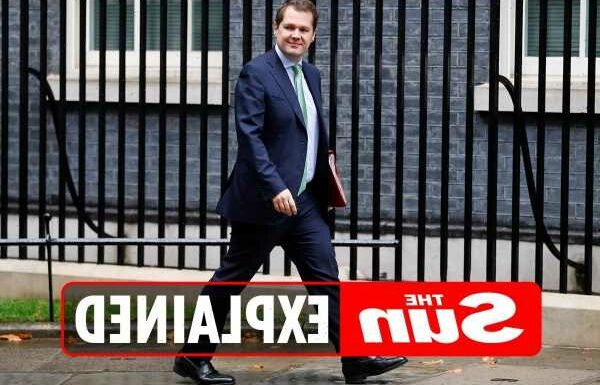 Who is Robert Jenrick and why did he get sacked as housing secretary? – The Sun