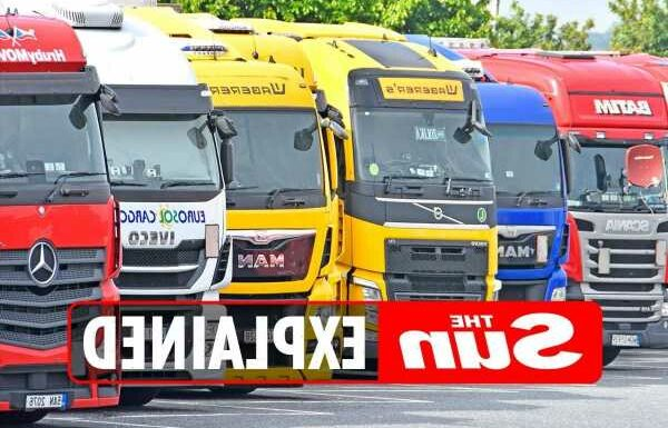 Why is there a shortage of HGV drivers in the UK?