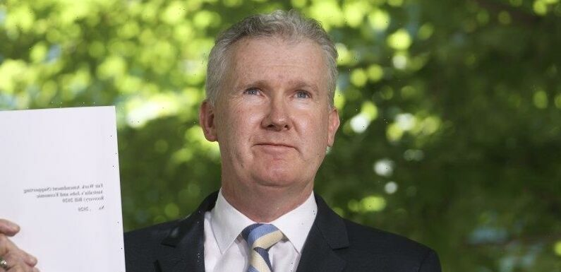 'An erosion of part-time work': Labor opens new front in job security debate