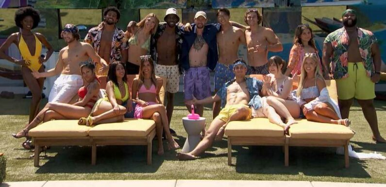 'Big Brother 23' Houseguests Reveal Whether They Want to Play Again