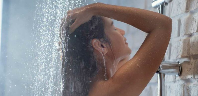 10 Shampoos That Lift Fine Hair to New Heights