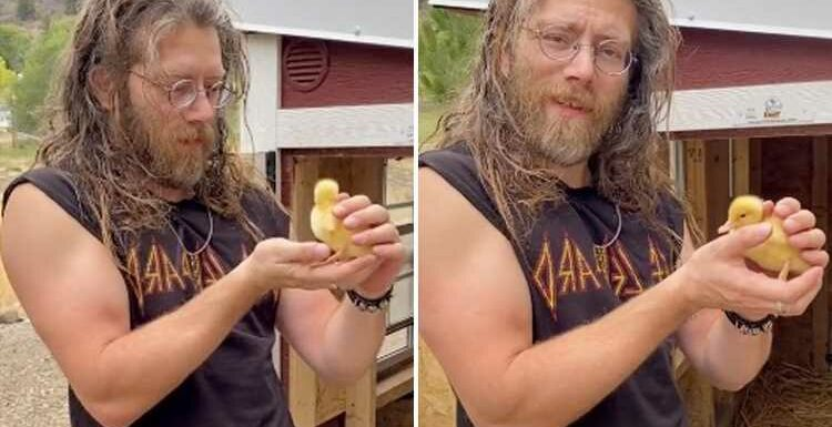 Alaskan Bush People's reclusive brother Joshua 'Bam Bam' Brown joins TikTok and takes fans inside his chicken coop