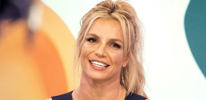 Britney Spears Says She Has 'A Good Support System' to Help Her Heal