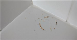 Cleaning fanatics share £1 hack to easily remove rusty patches from bath
