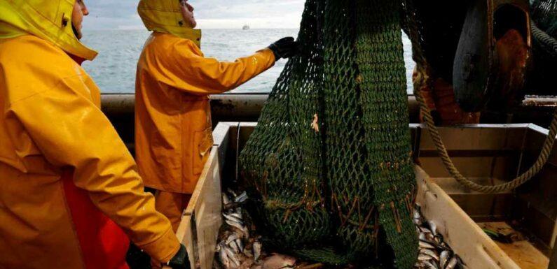 France in fresh bid to turn EU members against Britain as it escalates Brexit fishing wars amid Xmas shortage threats