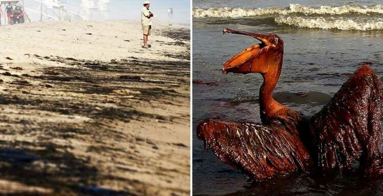 Huntington Beach disaster: Deadliest US oil spills from Deepwater Horizon to Exxon Valdez's slaughter of sea creatures