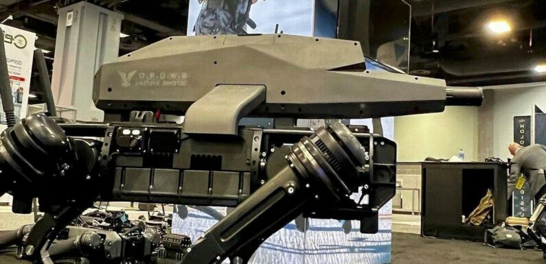 Killer robot dog mounted with sniper rifle can slaughter targets from 1.2km away