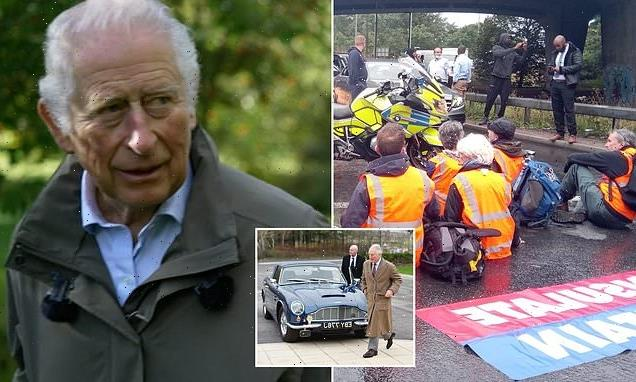 Prince Charles 'totally understands' groups like Insulate Britain