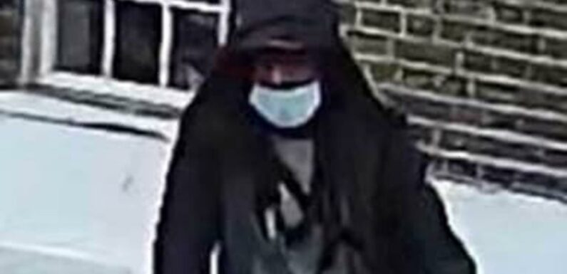 Serial sex attacker targets SEVEN women in a month in London after cycling up behind them