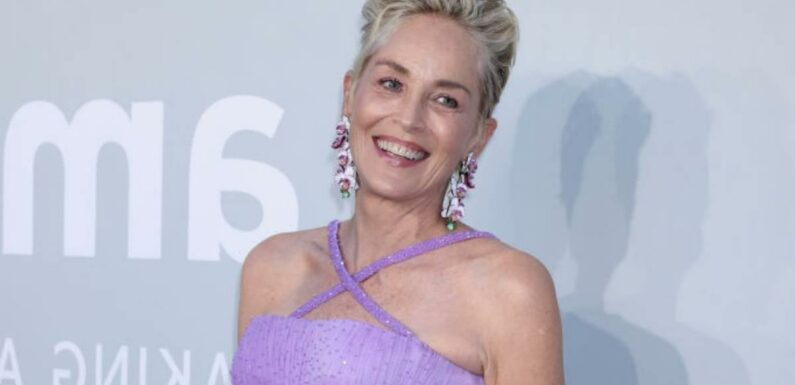 Sharon Stone wows in racy black bra and fans are astonished