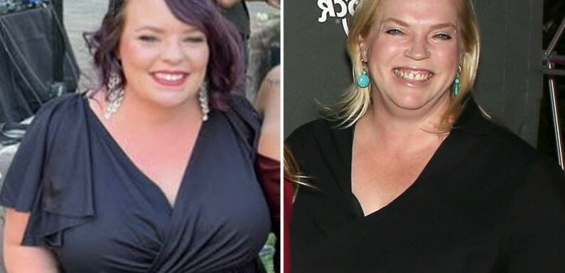 Teen Mom fans think Catelynn Lowell 'could be related' to Sister Wives star Janelle Brown in shocking lookalike photos