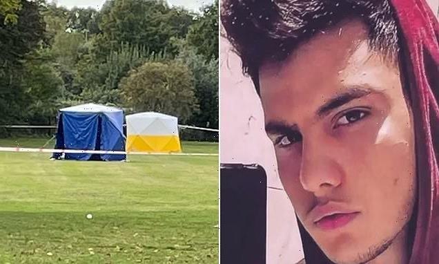 Teenager stabbed to death in Twickenham in front of school children