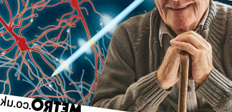 Treatment for Parkinson's may come from zapping the brain with electricity