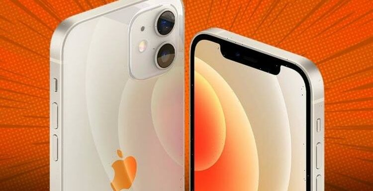 Ultimate iPhone 12 deals: Here are the biggest discounts from EE, Vodafone, Sky Mobile, O2