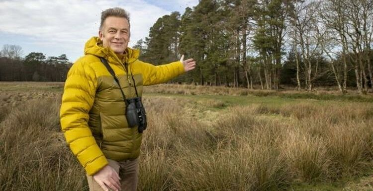 We must save wildlife 'Noah's Ark' in New Forest, says BBC presenter