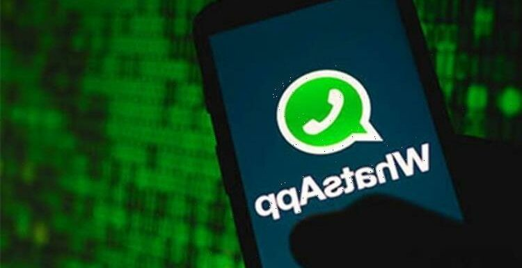 WhatsApp down: Has WhatsApp been hacked? Why is social networking site down?