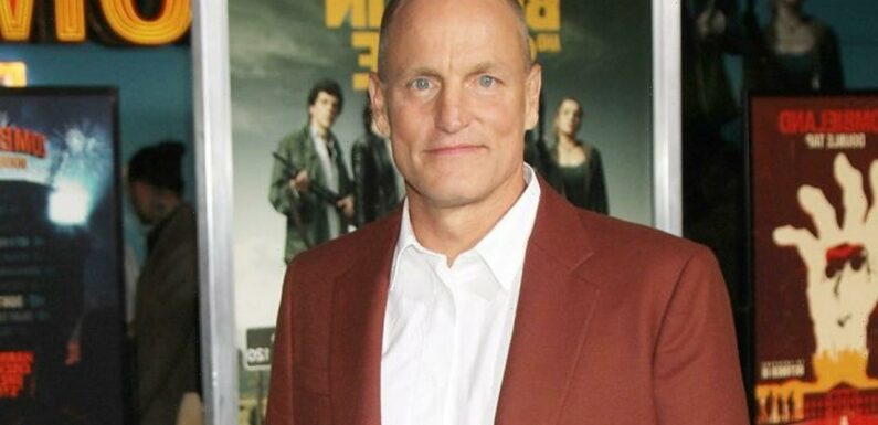 Woody Harrelson Involved in Bar Fight With Fan